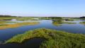 辽宁出台湿地保护修复方案 确保湿地面积不减少