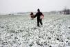 雨雪本周光临河南 郑州降雪可能要等到明年