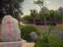 郑州新增绿地1380万平 明年启动国家生态园林城市创建