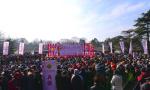 过年又有新去处!南京国际梅花节欢迎您