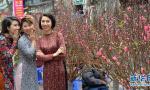 越南民众庆新春