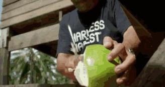 开户赌博:达能加入高端椰子水战局