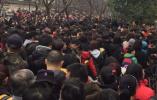 年初一南京七大旅游景区共接待57.7万人次游客