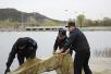 门头沟严打非法捕鱼 清理地笼1200多米解救5只甲鱼