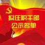 齐齐哈尔市拟任职干部公示名单 公示期为23日-27日