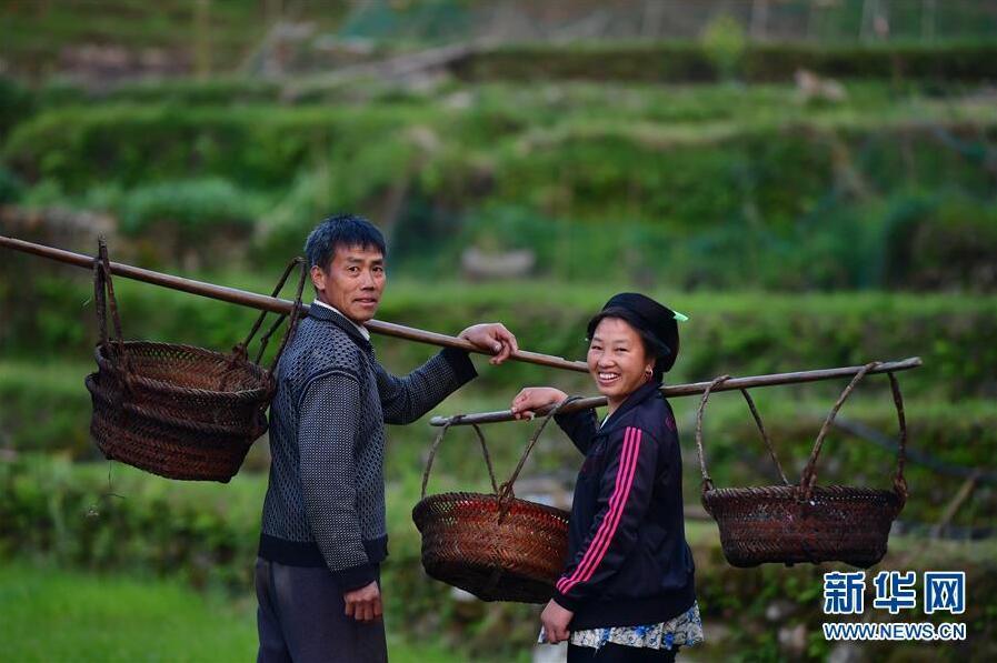 古老苗寨的爱情故事