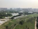 杭州城北又添五万平方米大公园 薰衣草花海率先登场