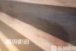宠物狗蹿上马路被撞死 母女迁怒工作人员打砸酒店
