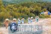 少林寺120亩作物成熟 小和尚下山去收麦(图)