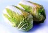 鹤壁浚县小河白菜通过全国农产品地理标志登记专家评审