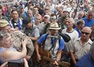 退伍军人议会口抗议