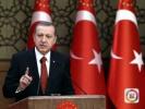 土耳其公布大选正式计票结果 埃尔多安获连任