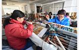 31小镇入选省级第二批特色小镇名单 南京这几个镇要火