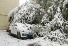 乌鲁木齐迎暴雪