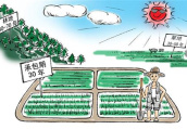 土地承包法修正案草案二审 明确保护土地经营权流转