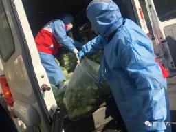 铁肩担道义,妙手著文章——30万斤爱心蔬菜背后的最美南师人李华平