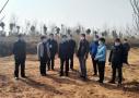 十张图写出的濮阳市华龙区岳村镇领导班子工作日志