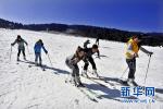 """滑雪场期盼""""夏热""""!河北省滑雪场纷纷发力夏季运营"""