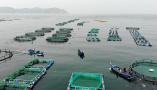 山東南隍城島:特色海洋經濟助海島漁民致富奔小康