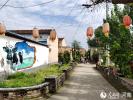 村子美了 游客来了,村民富了 产业兴了