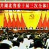 中共湖北省委十届三次全会
