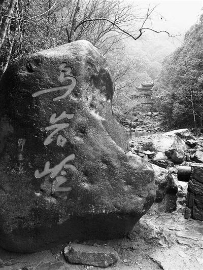 泰顺乌岩岭景区 黄莉 摄
