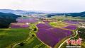 沈阳将再现盛京古城 加速创建国家全域旅游示范区
