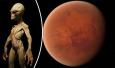 美宇航局:太阳系外7颗地球大小行星 或含液态水