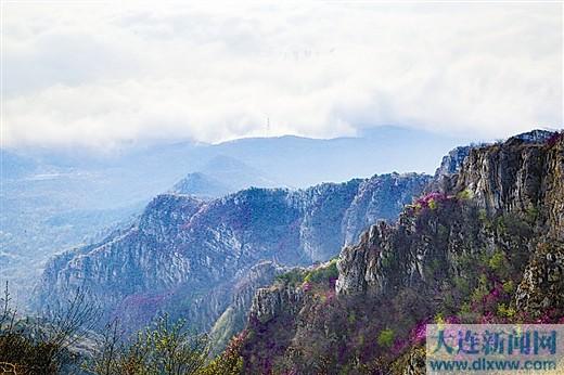 花海+峻岭+云海,这就是大黑山的魅力。