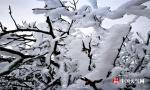 神农架现冰挂景观