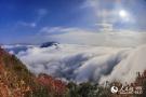 三峡:又到红叶漫山