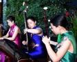 美女民乐合奏