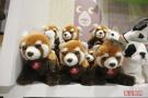 北京动物园卖萌啦