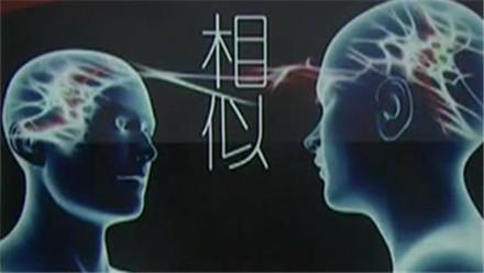 """好朋友""""脑回路""""相似 老铁们想事的方式趋同"""