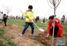 平顶山:市民纪念林种植地点确定 本周日在宝丰县龙山植树