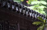 今夏江苏入梅时间或将提前 台风活动可能增多