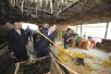 泔水猪调查追踪:14家养殖户泔水喂猪 养殖场将依法取缔