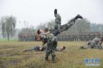 陆军定七条人才标准 淘汰不想不谋不会打仗军人