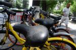 共享单车带来的烦恼:扫码后才发现有故障,车锁一开一关钱已被扣