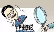 社旗县人力资源和社会保障