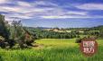 济南推荐智慧农业试验区建设 农产品质量追溯全覆盖