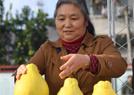 长寿柚乡村旅游节
