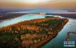 森林河南啥模样?建中华生物园和郑州黄河中央湿地公园