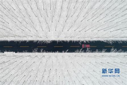 山东:雪国风光