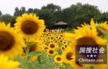 """上海""""仁济医院纠纷""""涉事双方:多点相互理解风波本可避免"""