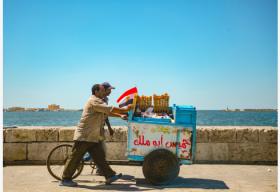 联合国粮农组织驻埃及代表呼吁埃及关注健康饮食问题