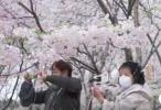 """适应且安全  外籍记者镜头下的北京""""新常态"""""""
