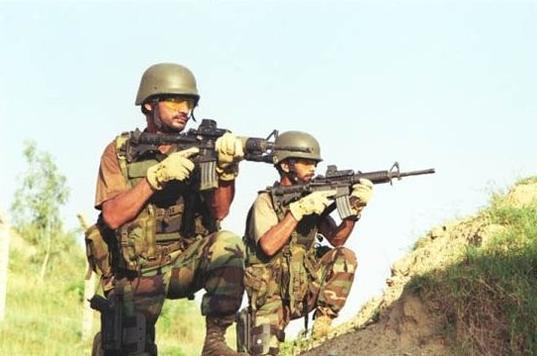 阿富汗军方击毙37名武装分子