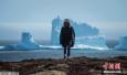 """""""旅行的冰山"""" 加拿大纽芬兰小镇迎今年首座冰山"""