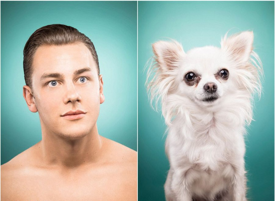 表情 梁静/核心提示:英国曼彻斯特的一名宠物主人给她的小狗打起了特制...